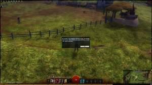 Guild Wars 2 : Passiert mit einem neuen Charakter häufig: Wir landen im Überlaufbecken.