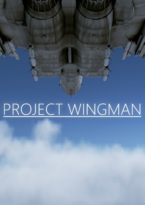 Cover zu Project Wingman
