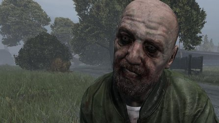 DayZ - Patch 0.61 bringt Server zum Absturz