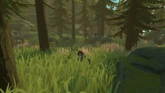 Pine Spiel
